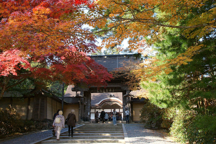 Photo: Autumn maple leaves (momiji) at Kongōbu-ji on Mount Kōya, a UNESCO World Heritage Site. Credit: Wikimedia Commons.